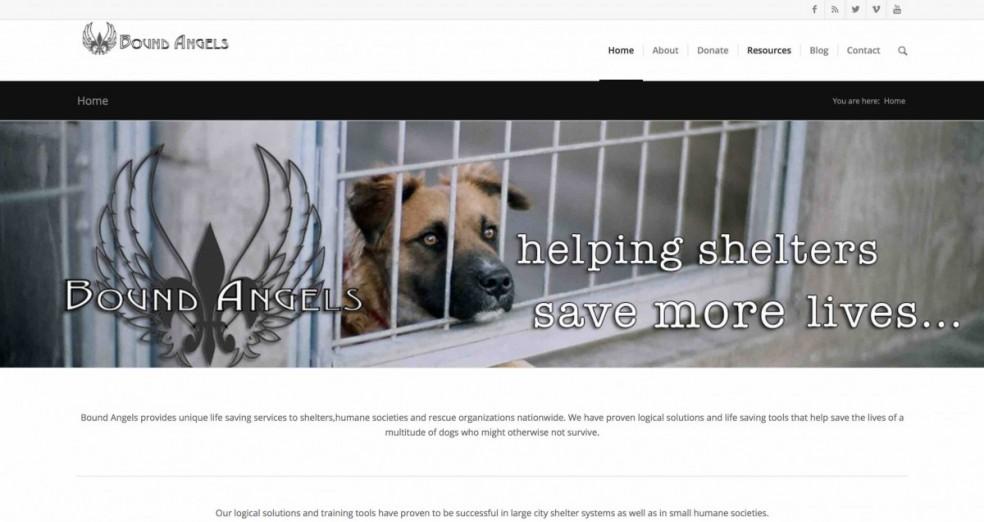 Bound Angels Dog Rescue Robert Cabral